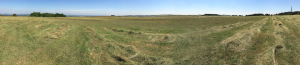 Panoramic view of site